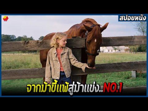 จากม้าที่คนมองว่าหมดประโยชน์ สู่ม้าเเข่ง No.1 (สปอยหนัง) DREAMER