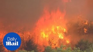 AUGUST 2019: Thousands of firefighters battle wildfires on Greek island