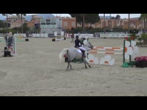 Wesselton M 1,25 i Oliva Spanien