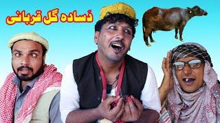 Da Sadagul Qurbani Funny Video By Sadagul Vines 2020