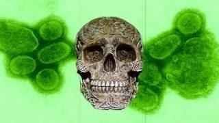 La peor pandemia de la historia