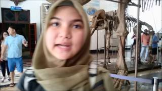 Lessons from Geology Museum