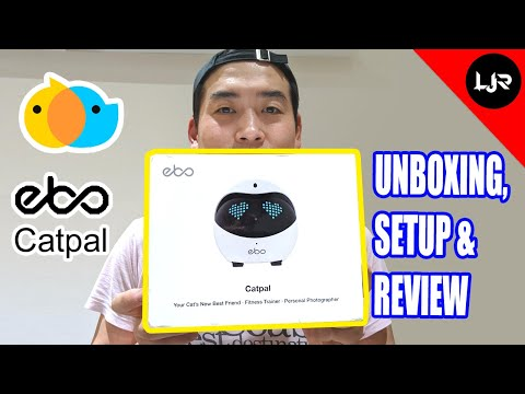 Ebo Robot - Unboxing, Setup And Review