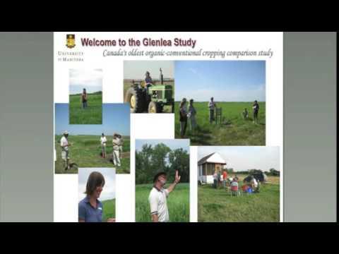 Organic Field Crop Production & On-farm Plant Breeding