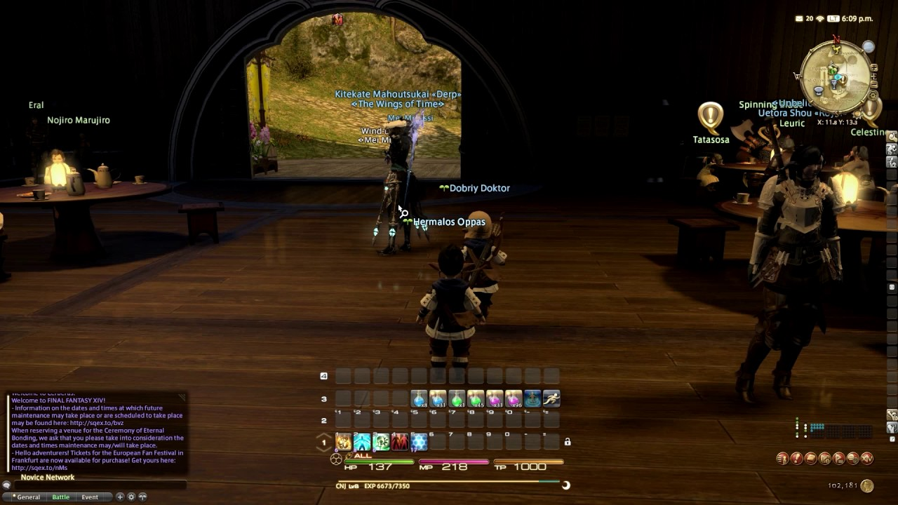 Guide for FFXIV: how to get rid of green leaf (new adventurer status) *Perm  Way*