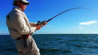 ISLAMORADA BACK COUNTRY FISHING
