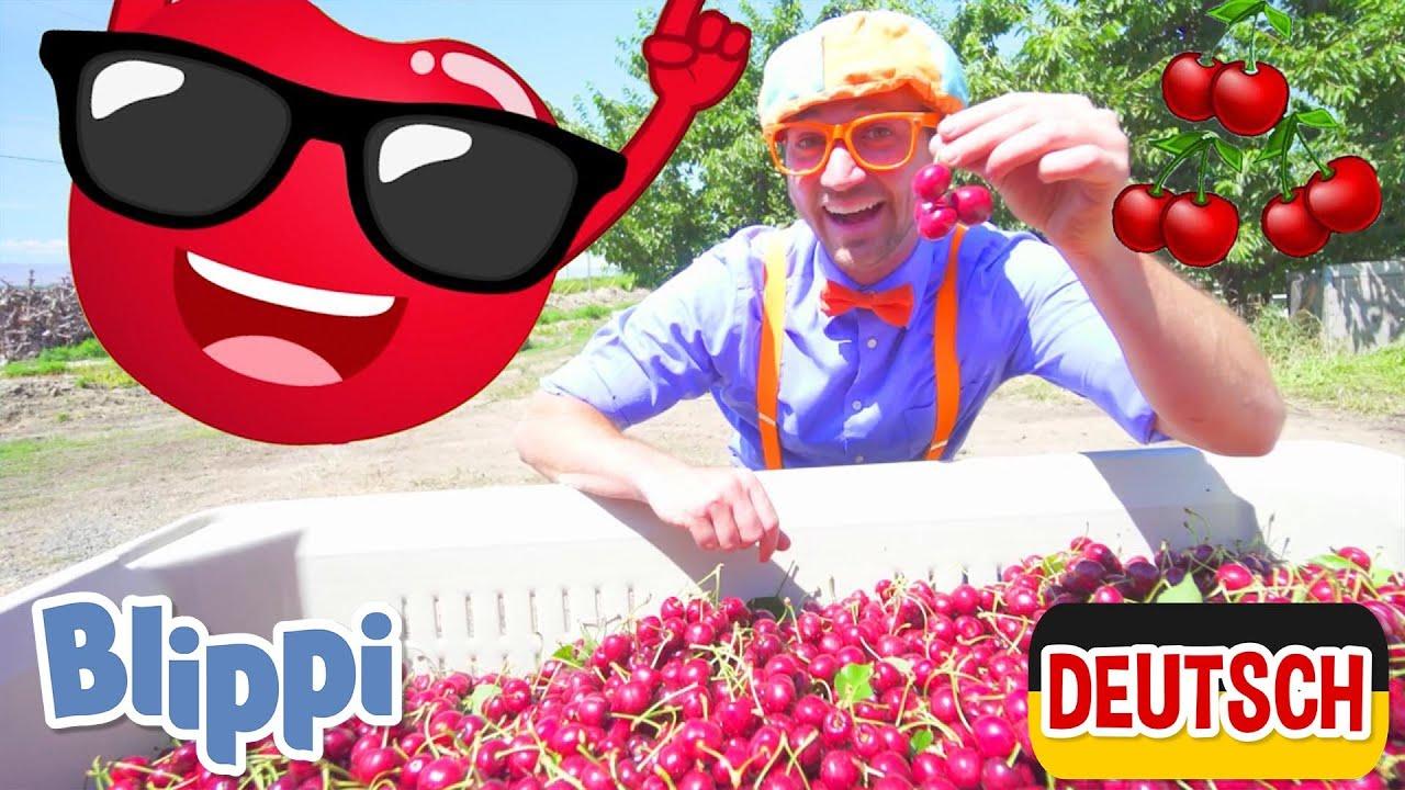 Blippi Deutsch - Blippi besucht eine Kirschfarm   Abenteuer und Videos für Kinder