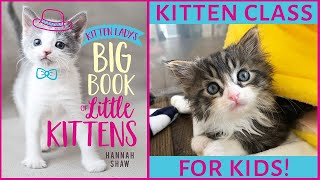 Kitten Class for KIDS! Book Reading and Q&A with Kitten Lady.