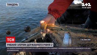 Новости недели: какие изменения произошли в ситуация незаконного вылова рыбы в Днестровском лимане