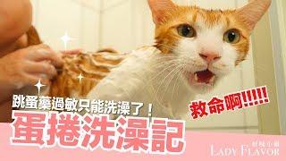 蛋捲洗澡記!以為裝沒事就能出去?【好味貓日常】EP12 thumbnail