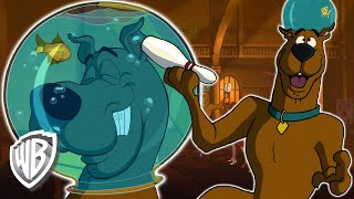 Scooby-Doo! | Scooby's Special Training | WB Kids