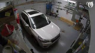 Garage Nest cam captures SUV rocking in Alaska's 7.0 earthquake