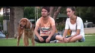 İzmir Köpek Eğitimi