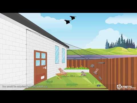 Backyard D.I.Y. Cat Netting Enclosure Animation | Catnets.com.au