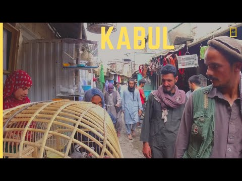 A DAY IN THE BIRDS MARKET KABUL AFGHANISTAN!