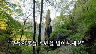 진돗개 깡순이와 소원바위 하산길~~~