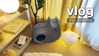 미니 투룸 인테리어   고양이 키우는 투룸 오피스텔 꾸…