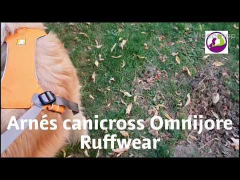Arnés canicross Omnijore Ruffwear _ Family DOG