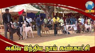 Madurai Canine Club's Dog Show - 2019 | அகில இந்திய நாய் கண்காட்சி