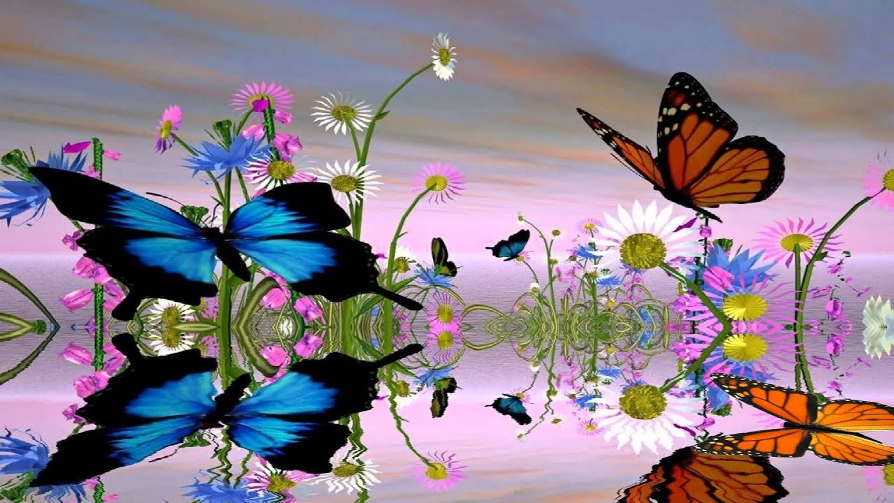 Spring 3d Live Wallpaper Fantastic Butterfly Animated Wallpaper Http Www