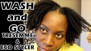 Wash and Go | 4B 4C Natural Hair | Tresemme Natural and Eco Styler Gel