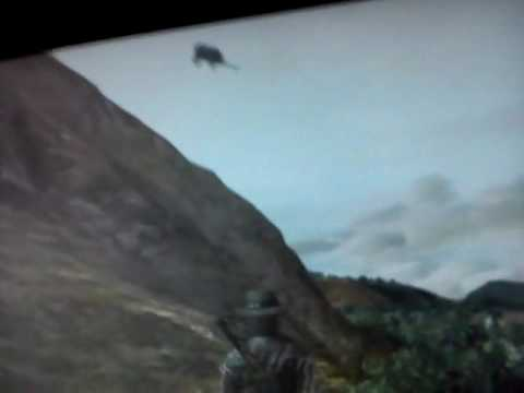 Red Dead Redemption flying carriage glitch