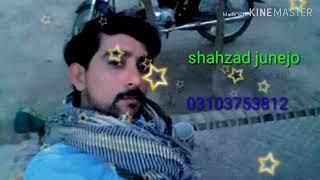 Shahzad junejo