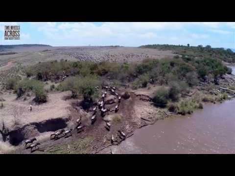 Kenya Wildlife, like never seen before! Drone footage short version