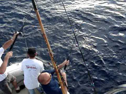 Reward Sportfishing 6 Pack San Diego Fishing Charters