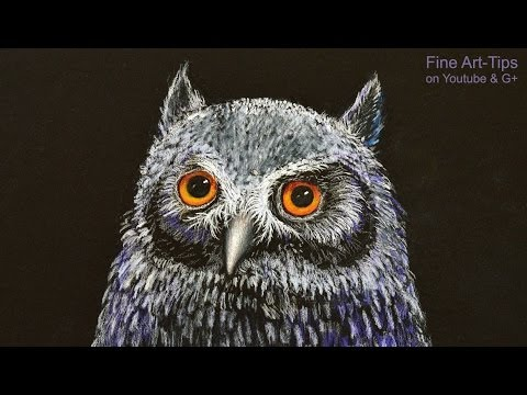 How to Draw an Owl at Night