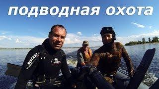 Подводная охота с Дмитрием Васильковым. Старый трейлер.