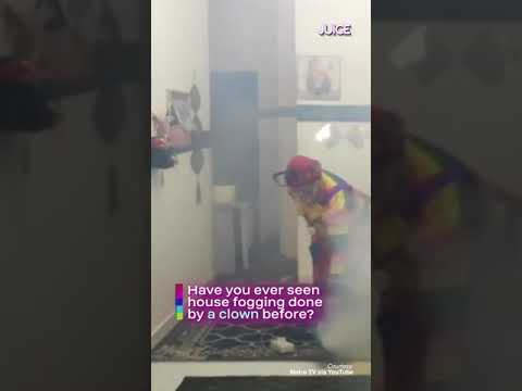 Professional Clown Fogger Delivers Smiles While Sanitising Your Home!