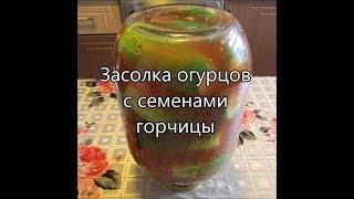 Засолка огурцов с семенами горчицы