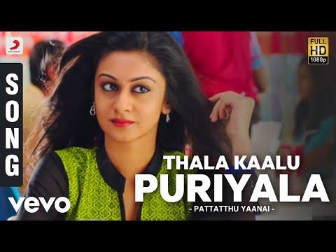Pattatthu Yaanai - Thala Kaalu Puriyala Song | SS Thaman