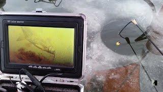 Зимняя ловля леща на игру. Winter fishing for bream on the game.
