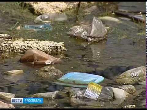 В Заволжском районе Ярославля горы мусора вырастают прямо перед окнами жилых домов