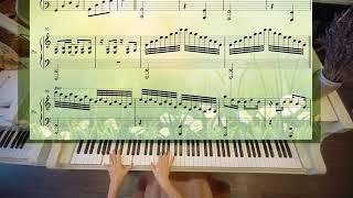 🎶 Piano thư giãn nhất - Tôi Thấy Hoa Vàng Trên Cỏ Xanh - Cover by Phi Phi
