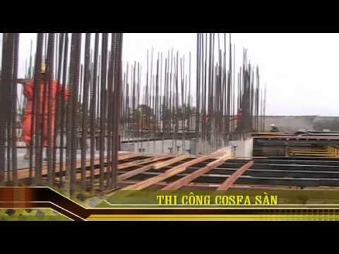 mong topbase san bong