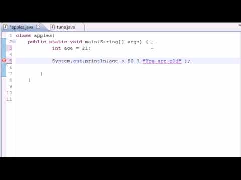 Java Programming Tutorial - 20 - Conditional Operators