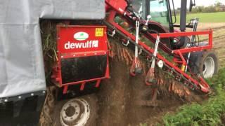 Kombajn do warzyw Dewulf P3K Profi - prędkość zbioru 4 km/h - DEMO AGROJUREK