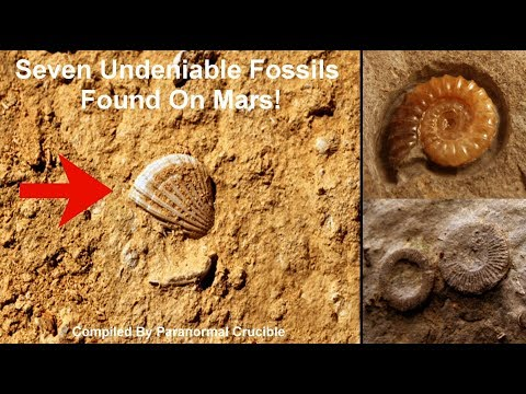 nouvel ordre mondial | Seven Undeniable Fossils Found On Mars! 2017