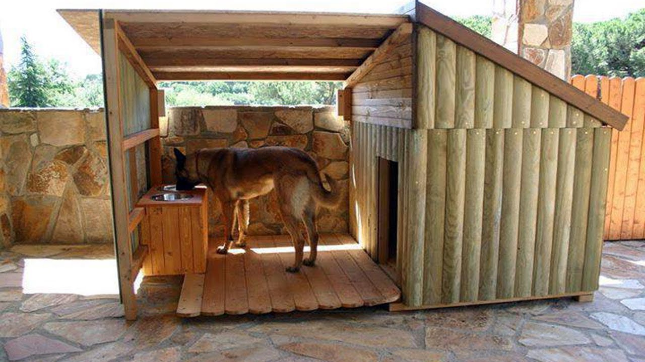 Warm Dog House Ideas