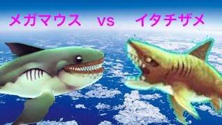 ウバザメ・メガマウス・イタチザメの使用レビュー 帰ってきたハングリーシャークpart19