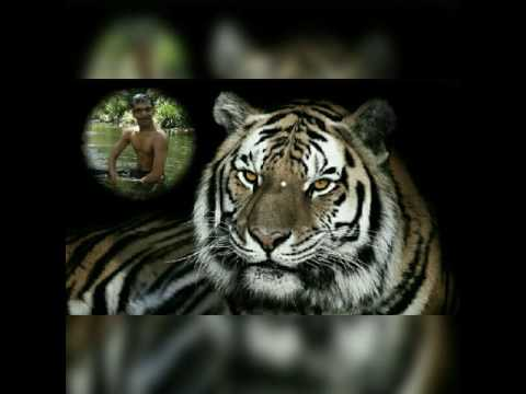 Manish Surve Kalyan