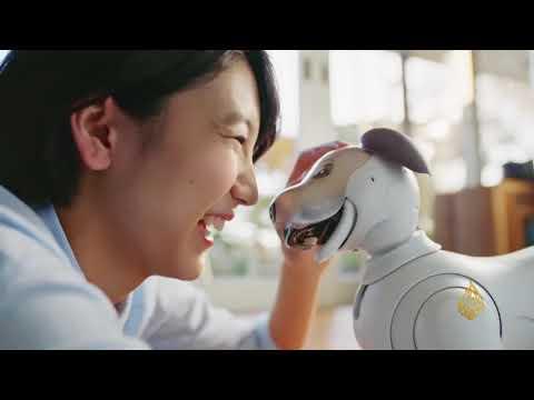 حياة ذكية- روبوت منزلي في شكل جرو لطيف  - نشر قبل 3 ساعة