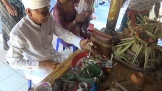 Баби Гулинг или молочный поросенок острова Бали(отдых на бали, путешествие на бали., 2014-03-09T18:31:35.000Z)