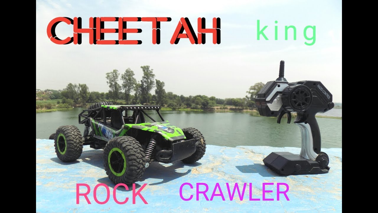 rc adventure with cheetah king 2 4ghz 1 16 scale rc rock. Black Bedroom Furniture Sets. Home Design Ideas