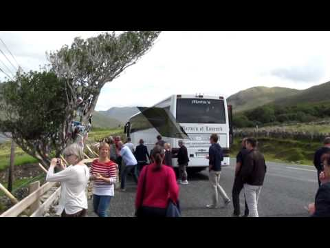 Tour of Ireland 2015 Marek
