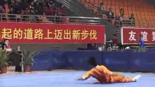 2010年全国武术套路锦标赛(传统)M14 006 男子象形拳  王恩龙