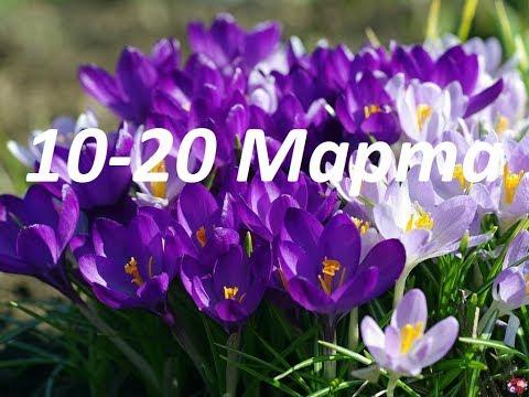 ОВЕН-ЛЕВ-СТРЕЛЕЦ ТАРО-ПРОГНОЗ НА 10-20 МАРТА 2020